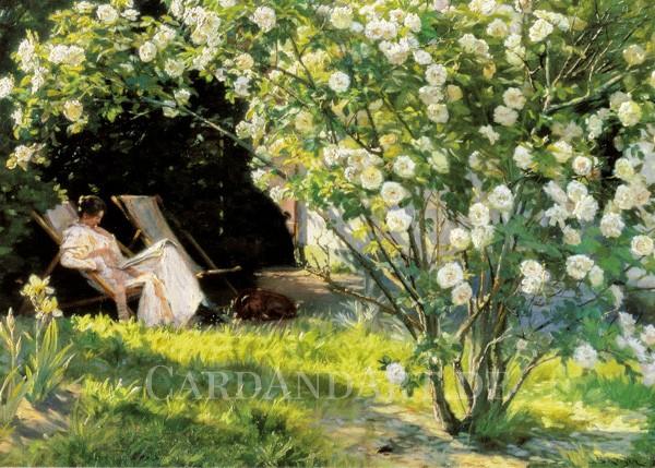 Kroyer: Rosengarten - Postkarte