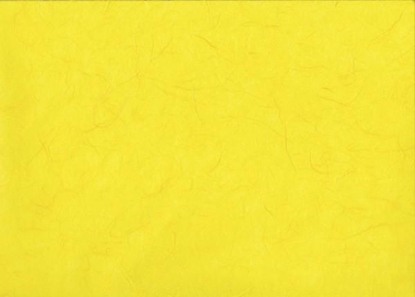 Maulbeerseide gelb - Geschenkpapier