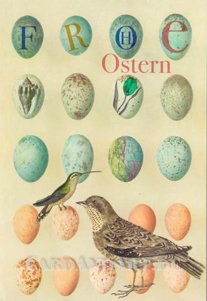 Kolibrie - Ostereier - Doppelkarte