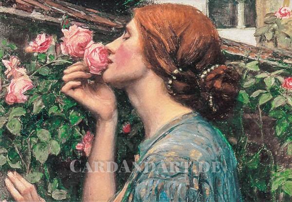 Waterhouse: Die Seele der Rose - Doppelkarte