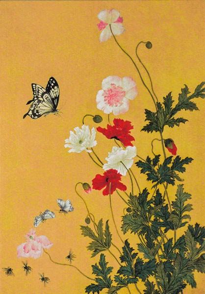 Mohn und Schmetterlinge - Doppelkarte