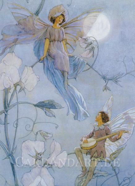 Tarrant Margaret: Fairies Serenade - Postkarte
