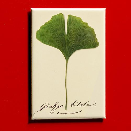 Goethe J.W. Ginkgo biloba Handschrift - Magnet