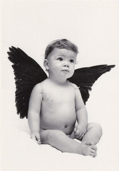 Engel Daniel - Postkarte