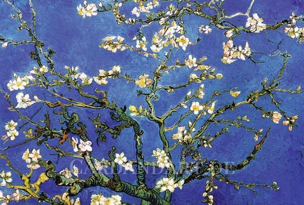 Vincent van Gogh: Blühende Mandelbaumzweige - Postkarte