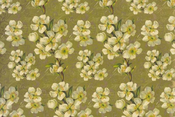Mandelblüten - Geschenkpapier mit zartem Goldfarbenem Druck