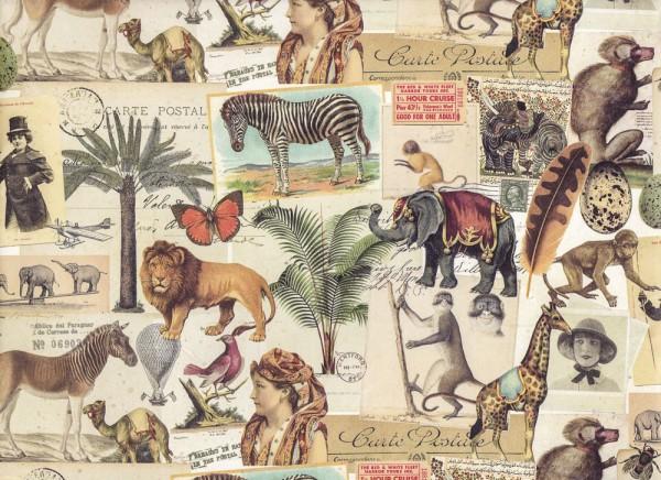 Carte Postale Africa - Geschenkpapier