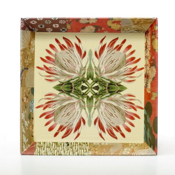 Fleur de protée - Schale18 cm x 18 cm