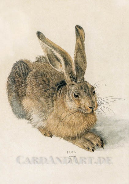 Albrecht Dürer. Der Hase - Postkarte