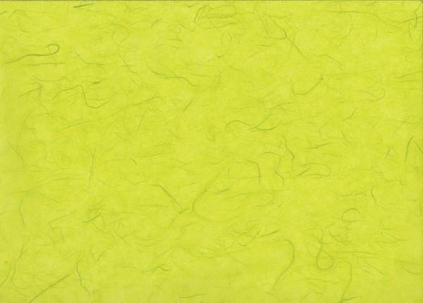 Maulbeerseide limone - Geschenkpapier