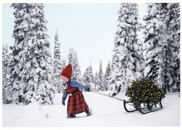 Wichtelmädchen holt das Weihnachtsbäumchen - Postkarte